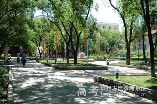 黑龙江农业工程职业学院校园一角