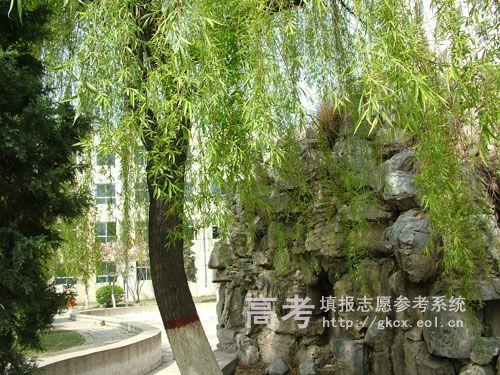 华北电力大学科技学院校园一角