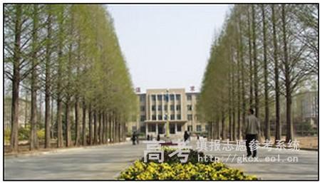 青岛农业大学海都学院校园一角