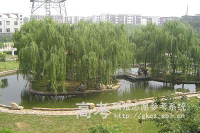 许昌职业技术学院校园一角