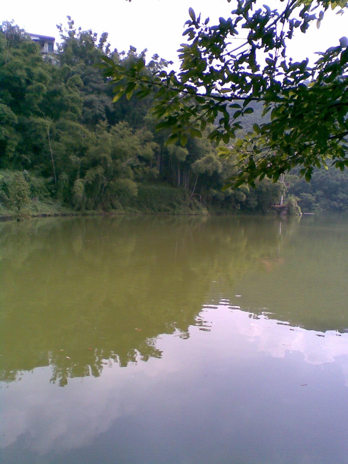 广州医学院校园湖面