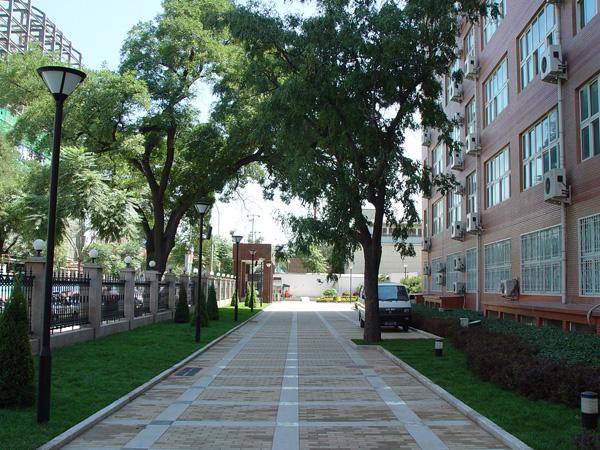 《校园小路》校园的小路汪国真有幽雅的校园/就会有美丽的小路/有美